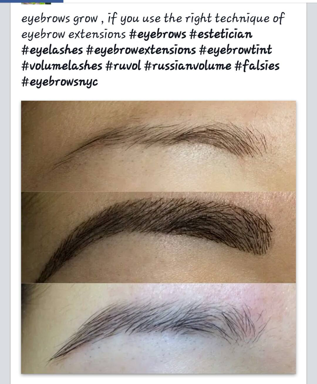 Eyebrow Extensions At Luxx Lash Luxx Lash Salon Boutique