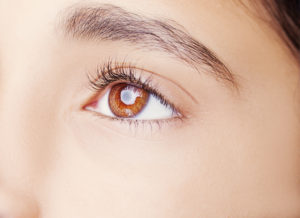 Beautiful Eyebrows Luxx Lash